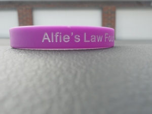 Alfie's Wristbands for £2.00